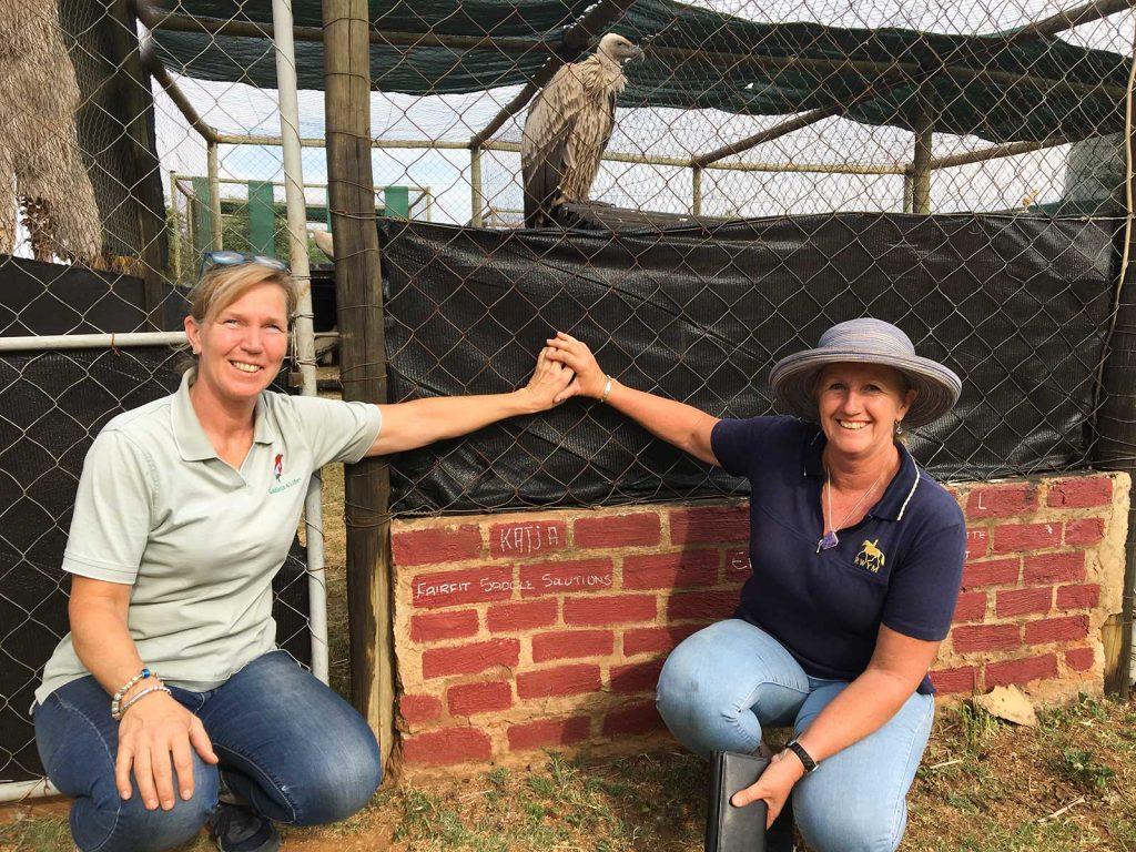 Spendenaktion Camp gerettete Geier