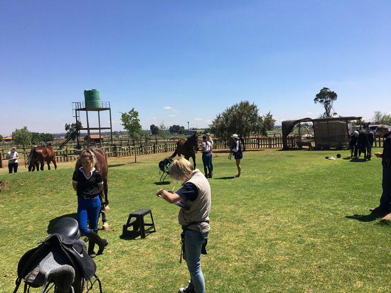 Pruefung zum Sattel Ergonom Suedafrika 2018